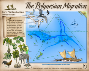 1_the_polynesian_migration