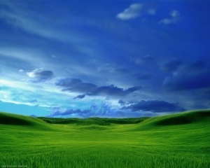Grassy_Plains_717200735815PM691