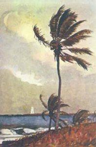 Palm Tree Nassau Winslow Homer