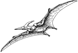 Pterodactyl_2_(PSF)