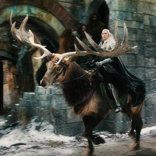 elf-elk-lord-of-the-rings-the-hobbit-Favim.com-2609245.jpg