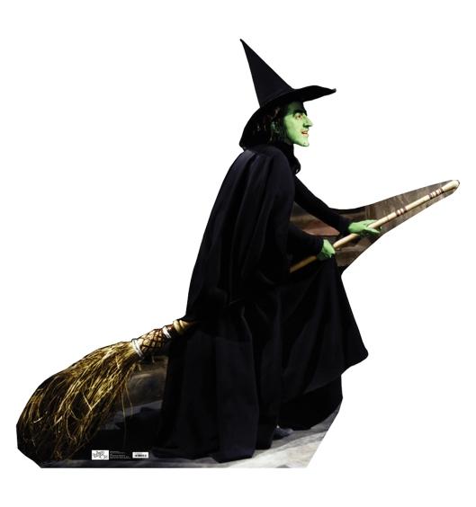 witchflying