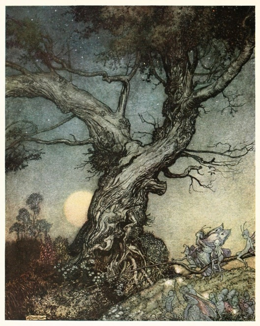02-arthur-rackham-imagina-1914-frontispiece