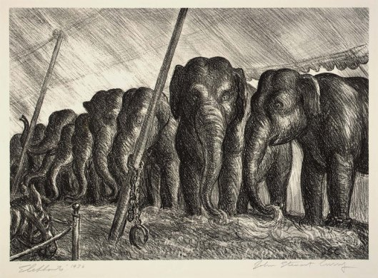 2circuselephants1936.jpg