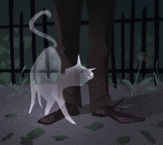 image1ghostcat.jpg