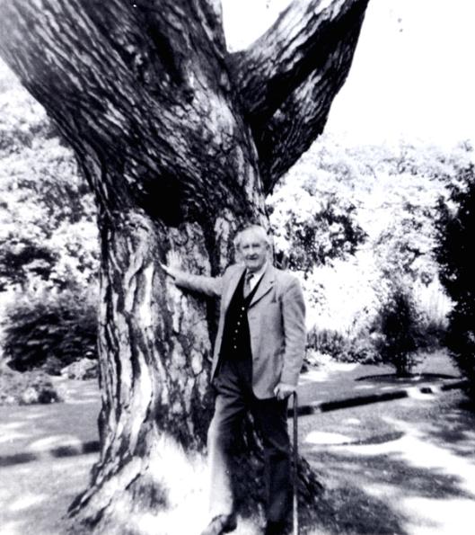 image1jrrttree.jpg