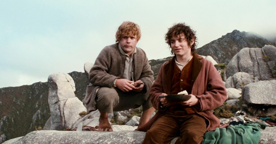 9. Sam looks out with Frodo.jpg